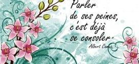 Parler de ses peines c'est deja se consoler - Albert Camus